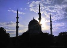 moskésilhouette Fotografering för Bildbyråer