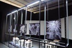 7. Moskau internationale Biennale von der zeitgenössischen Kunst Stockfotografie