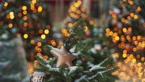MOSKAU, RUSSLAND - 6. DEZEMBER: Beige Plastikweihnachtsstern auf Tannenbaum-Wannenschuß Bokeh-Effekt auf den Hintergrund stock video