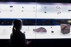 MOSKAU, RUSSLAND - 4. November 2016: kleines Mädchen, das Ausstellung betrachtet Lizenzfreies Stockbild