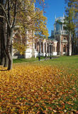 MOSKAU, RUSSLAND - 21. Oktober 2015: Großartiger Palast in Tsaritsyno herein lizenzfreies stockbild