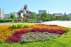 Moskau, Russland - 1. September 2016 Blumenbeet in Zelenograd in Moskau, Russland Stockfotografie