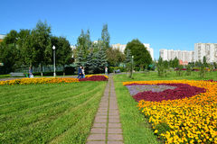Moskau, Russland - 1. September 2016 Großes Blumenbeet in Zelenograd in Moskau, Russland Stockbilder
