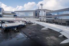Moskau Russland 28 von Feb 2016: Flugzeug unter Laden in einem Domodedovo-Flughafen Lizenzfreies Stockfoto