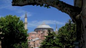 Moskee achter bomen op duidelijke hemelochtend in Turkije stock videobeelden