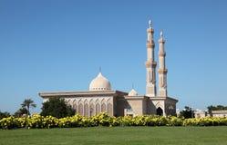 Moskee in de stad van Sharjah Stock Foto's