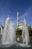 Moskee en watermening Royalty-vrije Stock Foto