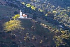 Moskee op de heuvel royalty-vrije stock afbeelding