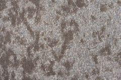 Moskitodrahtschirm mit Fäserchen, abstrakter Hintergrund Stockfotografie