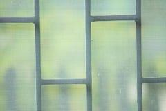 Moskitonetze Stockbilder