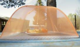 Moskitoschirm für Früchte Lizenzfreie Stockfotografie
