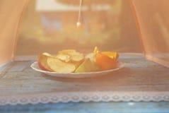 Moskitoschirm für Früchte Stockfotos