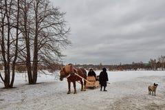 Moskou - 10 04 2017: Een mens in een vervoer met oranje paard, Mosc Stock Foto