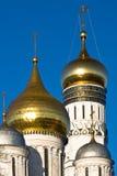 Moskou het Kremlin. Stock Afbeelding