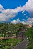 Moskou het Kremlin en een bosje van loofbomen in het park zaryad stock foto
