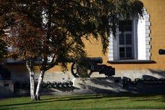 Moskou het Kremlin Oude op een rij geplaatste kanonnen royalty-vrije stock foto