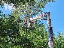 MOSKOU, 29 JULI, 2018: Mening over arbeiders bij de machinemensen van de liftkraan op het werk - bomen die proces snoeien De de s stock foto's
