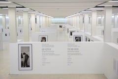 MOSKOU - NOVEMBER 11: De tentoonstelling van Bermeniev van Sergey Stock Fotografie