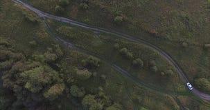 Moskou Oblast, Rusland Hoogste mening van de lange en smalle weg, die door groene weiden wordt omringd Het berijden van een witte stock video