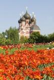 Moskou, orthodoxe kerk Stock Afbeelding