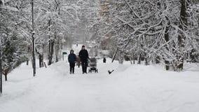 Moskou, Rusland - Januari 31 2018 De mensen lopen langs snow-covered stadspark in Zelenograd stock video