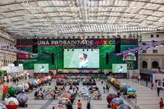 Moskou, Rusland, 20 Juni, 2018 Wereldbeker 2018, de streek van de voetbalventilator Royalty-vrije Stock Foto's