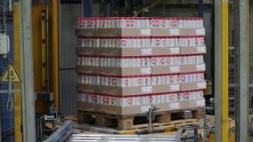 Moskou, Rusland - mag, 2017: Ingepakte doos op productielijn klem Kartondozen op transportband in fabriek stock footage