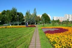 Moskou, Rusland - September 01 2016 Groot bloembed in Zelenograd in Moskou, Rusland Stock Afbeeldingen