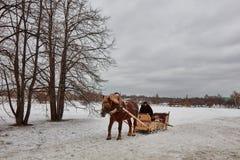 Moskva - 10 04 2017: En man i en vagn med den orange hästen, Mosc Arkivbilder