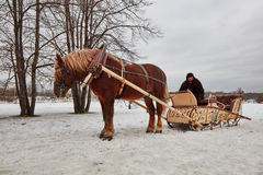 Moskva - 10 04 2017: En man i en vagn med den orange hästen, Mosc Royaltyfria Foton