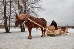 Moskva - 10 04 2017: En man i en vagn med den orange hästen, Mosc Arkivfoton