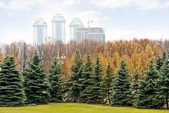 Moskva parkerar på den Poklonnaya kullen Royaltyfria Bilder