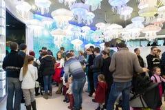Moskva Ryssland - December 10 2016 Folket står i linjen för utställning i Oceanarium i Krasnogorsk invigningsdagen Royaltyfri Fotografi