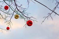 MOSKVA RYSSLAND - December 10, 2016: Moskva som dekoreras för ferier för nytt år och jul Gummi som åker skridskor isbanan på röd  Arkivfoton
