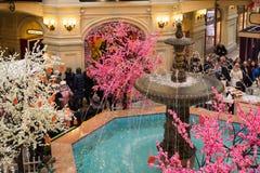 Moskva Ryssland - Februari 11, 2018 Central springbrunn i äldst lagergummi Royaltyfri Bild