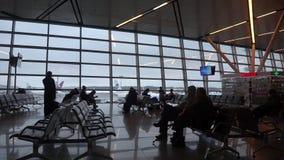 MOSKVA RYSSLAND - FEBRUARI 18,2019: Flygplatsterminal mot glasväggfönster Parkerad trafikflygplan som utanför ses, molnig himmel lager videofilmer