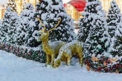 Moskva Ryssland - Februari 01, 2018: Snö-täckte julträd på den Manezhnaya fyrkanten moscow vinter Arkivfoto