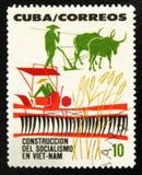 MOSKVA RYSSLAND - JULI 15, 2017: Sällsynt stämpel som skrivs ut i Kubashower Arkivbild