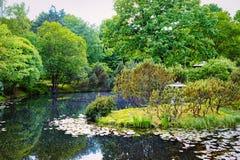 Moskvabotanisk trädgård av akademin av vetenskaper royaltyfria foton
