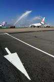 Moskvaflygplats Domodedovo Arkivfoto