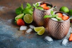 Moskvamulacoctailen med ingefärsdricka, vodka, limefrukt, jordgubbar och mintkaramellen i en tunnbindare rånar royaltyfri fotografi