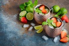 Moskvamulacoctailen med ingefärsdricka, vodka, limefrukt, jordgubbar och mintkaramellen i en tunnbindare rånar arkivfoton