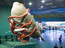 Moskvarium海洋学和海洋生物中心在莫斯科的VD 图库摄影