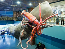 Moskvarium Oceanography and Marine Biology Center at Moscow's VD Royalty Free Stock Image