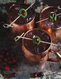 Moskwa muła koktajle garnirujący z cranberries i wapnem fotografia stock