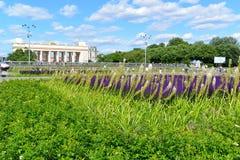 MOSKWA, ROSJA - 26 06 2015 Gorky park - central park kultura i odpoczynek Obrazy Stock