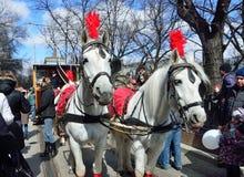 Moskwa, Rosja, Kwiecień, 15, 2017 Parada tramwaje w 2017 rok na Chistoprudny bulwarze Konie zaprzęgać w rywalizaci Zdjęcie Stock