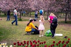 MOSKWA ROSJA, MAJ, - 15, 2019: Ludzie w Kolomna parku z kwitn?cym bzem przy wiosna czasem zdjęcie stock