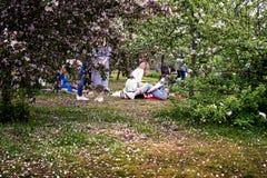 MOSKWA ROSJA, MAJ, - 15, 2019: Ludzie w Kolomna parku z kwitn?cym bzem przy wiosna czasem fotografia royalty free