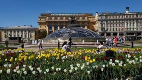 Moskwa Rosja, Maj, - 12 2018 Manezhnaya kwadrat dekoruje z tulipanami i Zholtov domem zdjęcie wideo